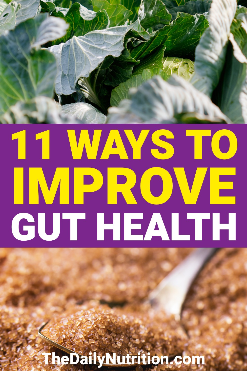 Improving gut health doesn't have to be difficult. It can be done relatively quickly as well. Here are 11 ways to improve gut health.