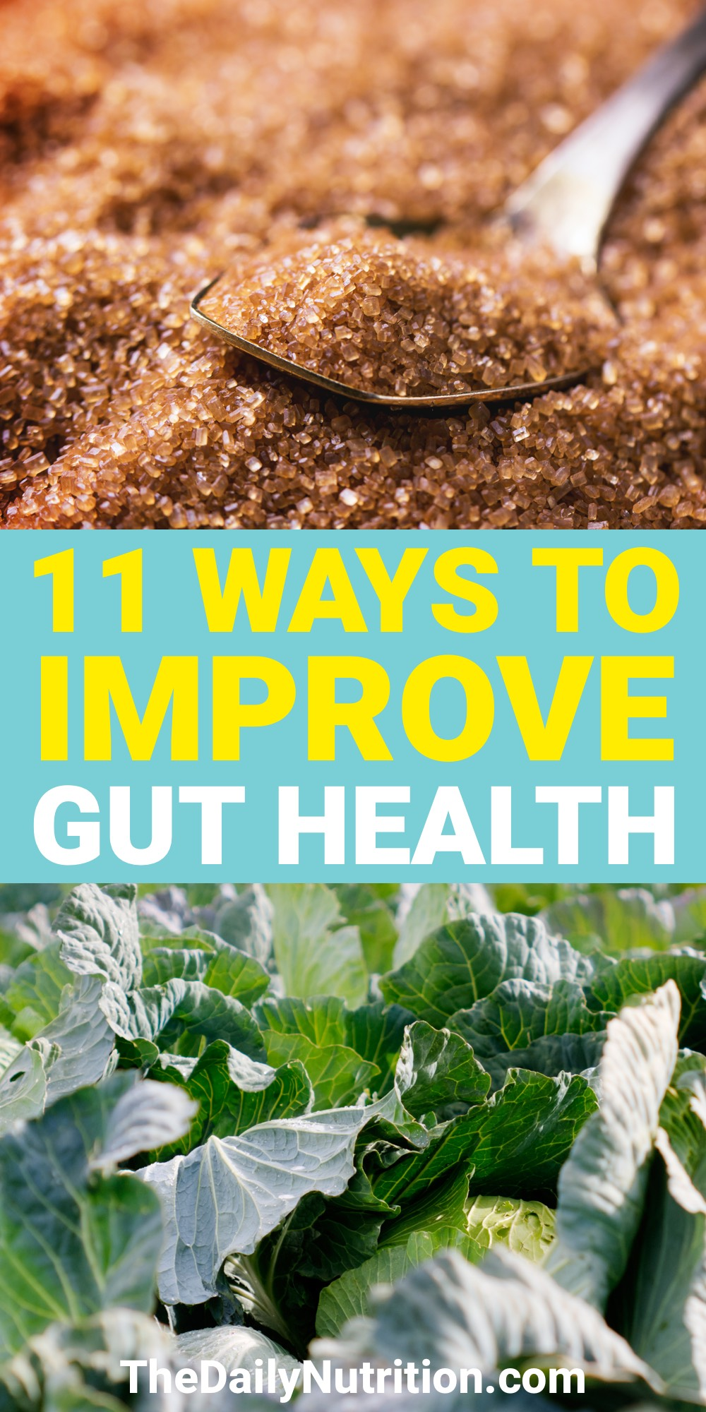 Gut health has a lot to do with your lifestyle. Here are 11 ways to improve gut health without having to change your lifestyle drastically.