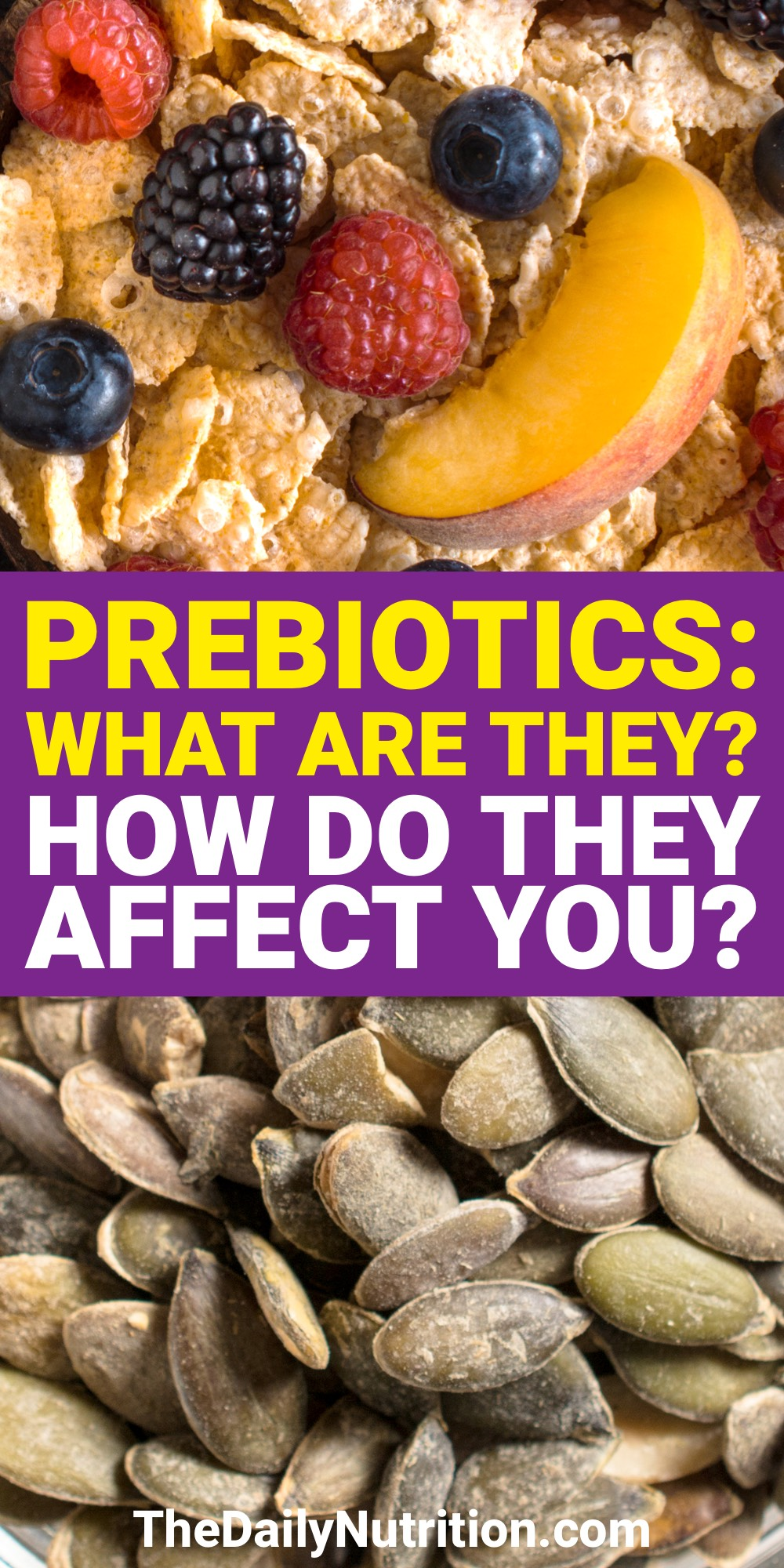 If you're comparing Prebiotics to probiotics then you need to understand what they both do. So, what are Prebiotics? Find out here.