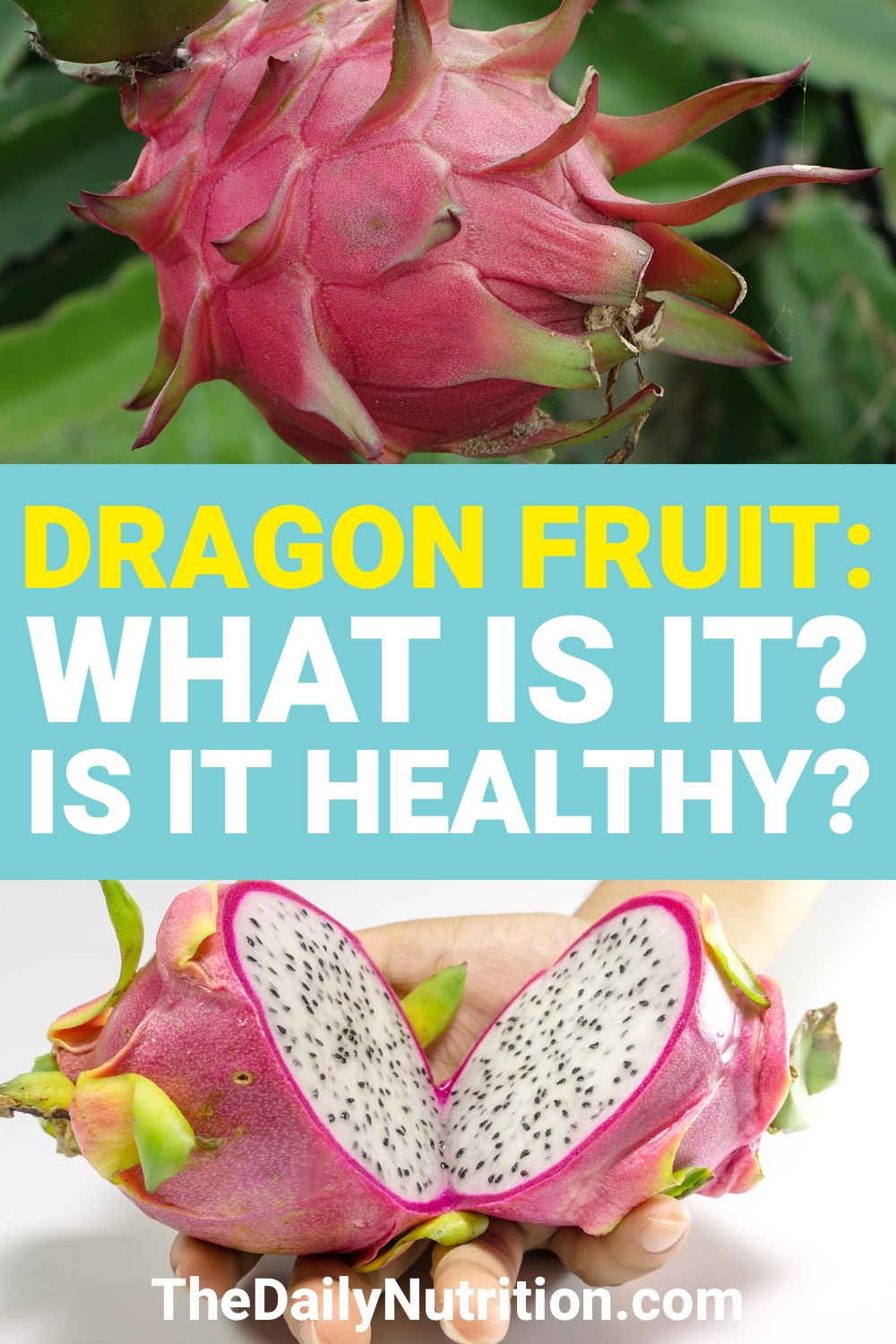 Dragon fruit is very unique. However, what are dragon fruit benefits? Find out some benefits and more here.