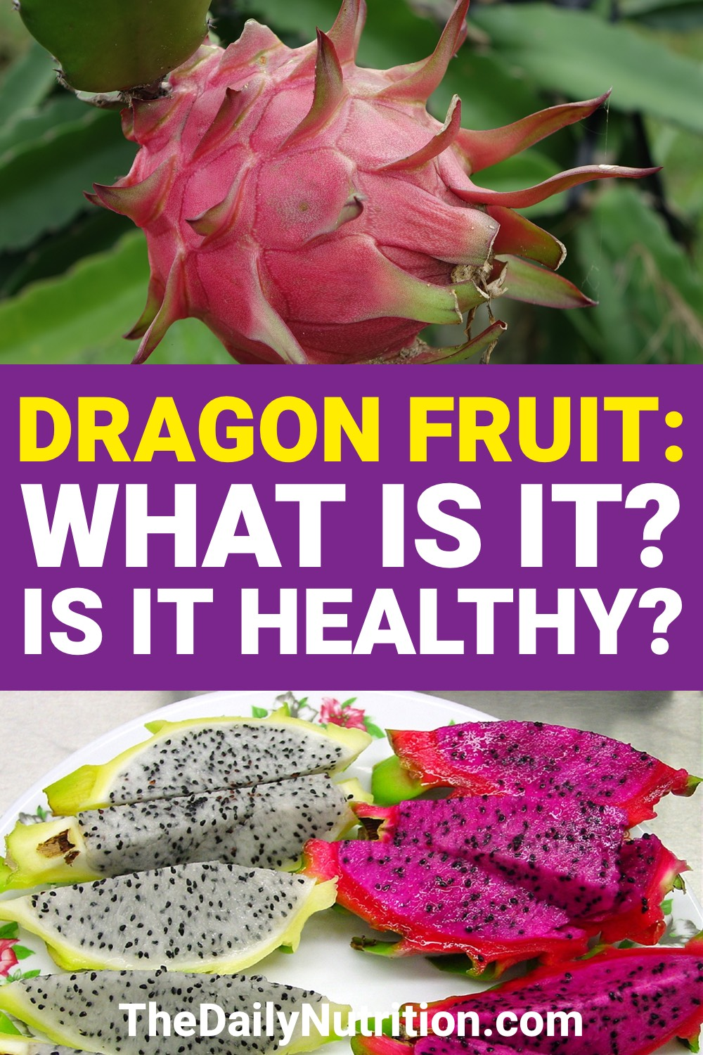 If you've never had dragon fruit, maybe you should consider having it. Dragon fruit has a lot of benefits that makes it even more unique than it looks.