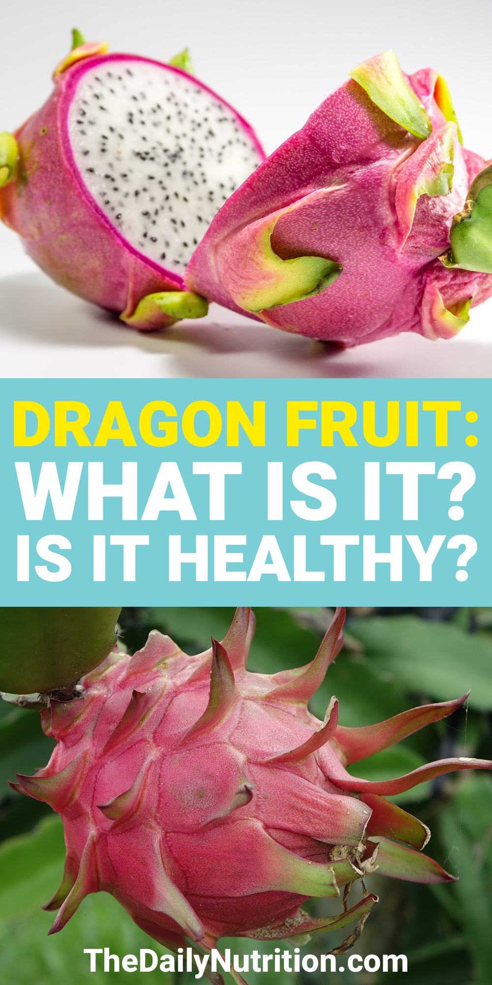 Dragon fruit is a very unique fruit. If you've never had it, you may be thinking what does dragon fruit taste like? Here, you can find the answer and much more about dragon fruit.