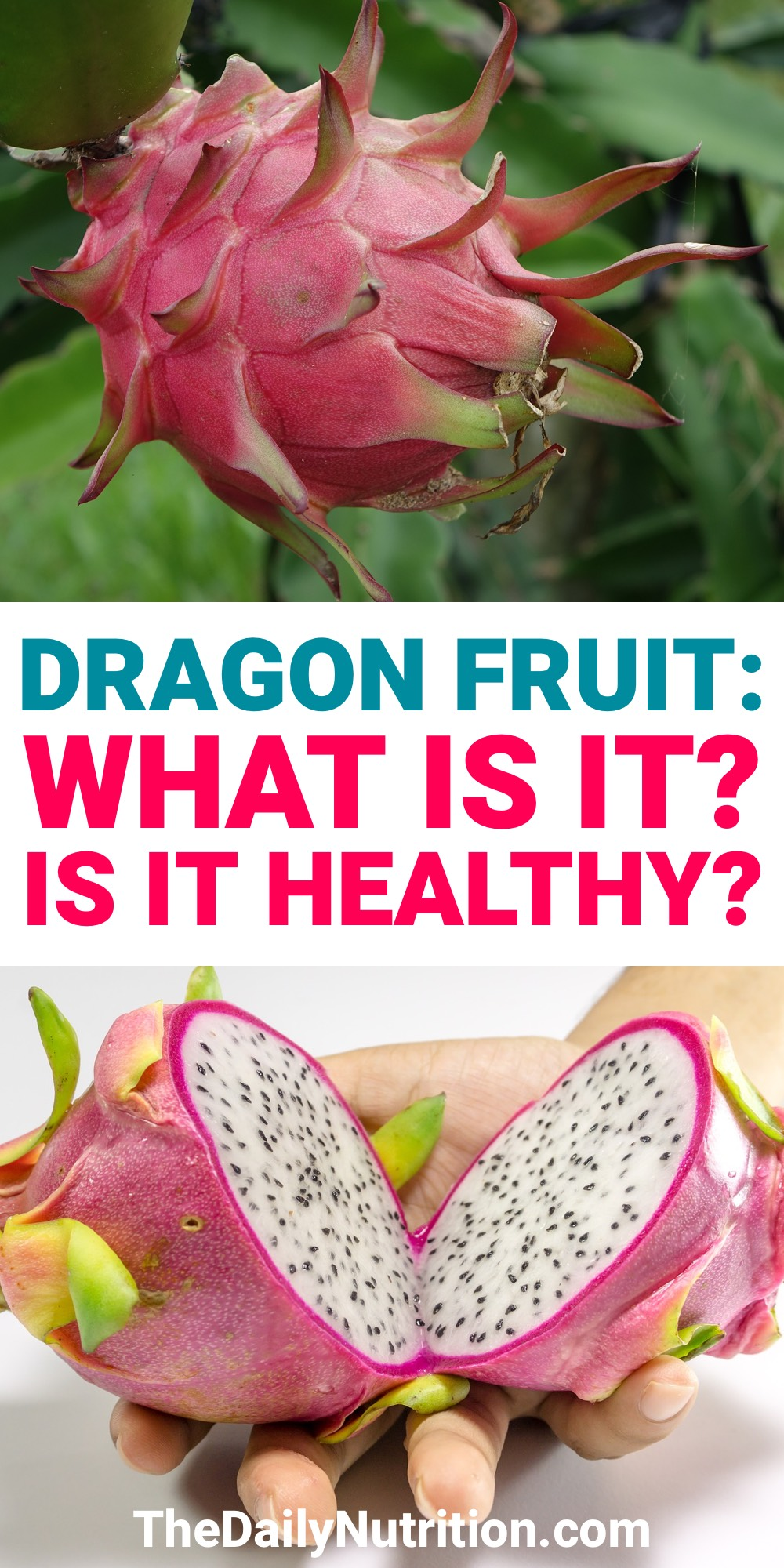Dragon fruit is a fruit that looks like it's from an alien planet. Although, it has a ton of benefits. What are dragon fruit benefits? Find out here.