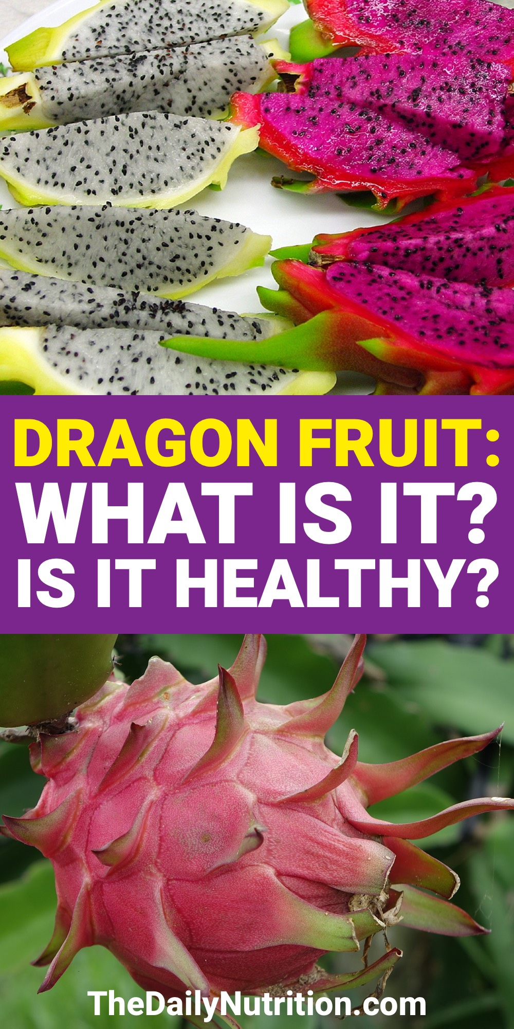Dragon fruit benefits are very similar to other fruits even though it looks much different than other fruits. Find out what these dragon fruit benefits are here.