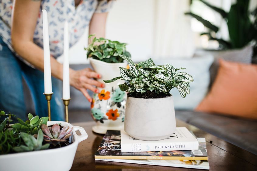 2018 04 Iha Creative Planters You Can Find In Your Kitchen Now Designs 2 Resize
