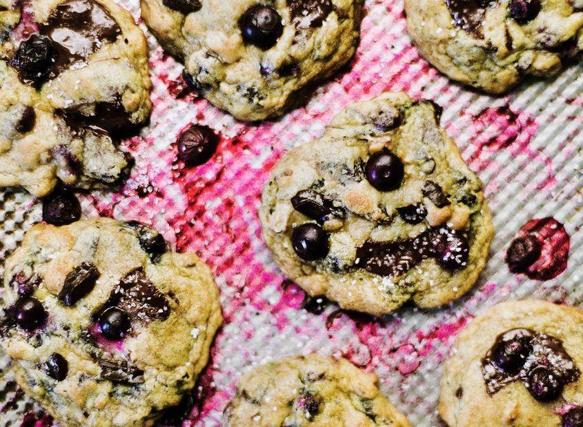 Blueberries0043 Resize
