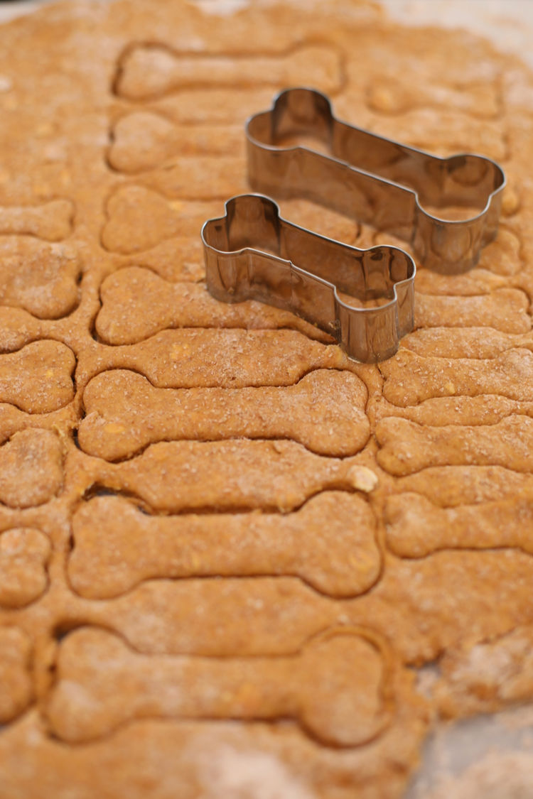 Homemade Dog Biscuits By Gemma Stafford 3