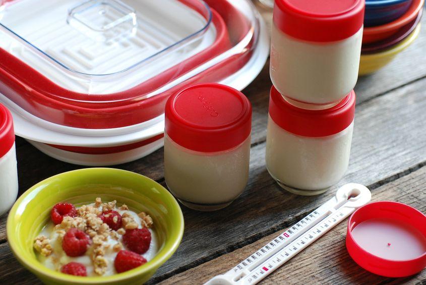 Homemade Yogurt 3