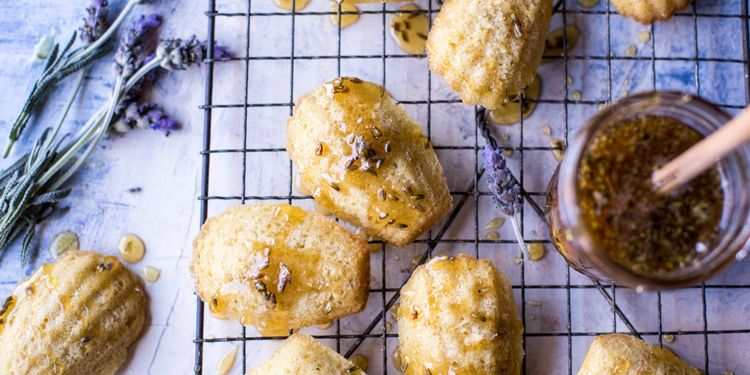 Classic French Madeleines with Lavender Honey