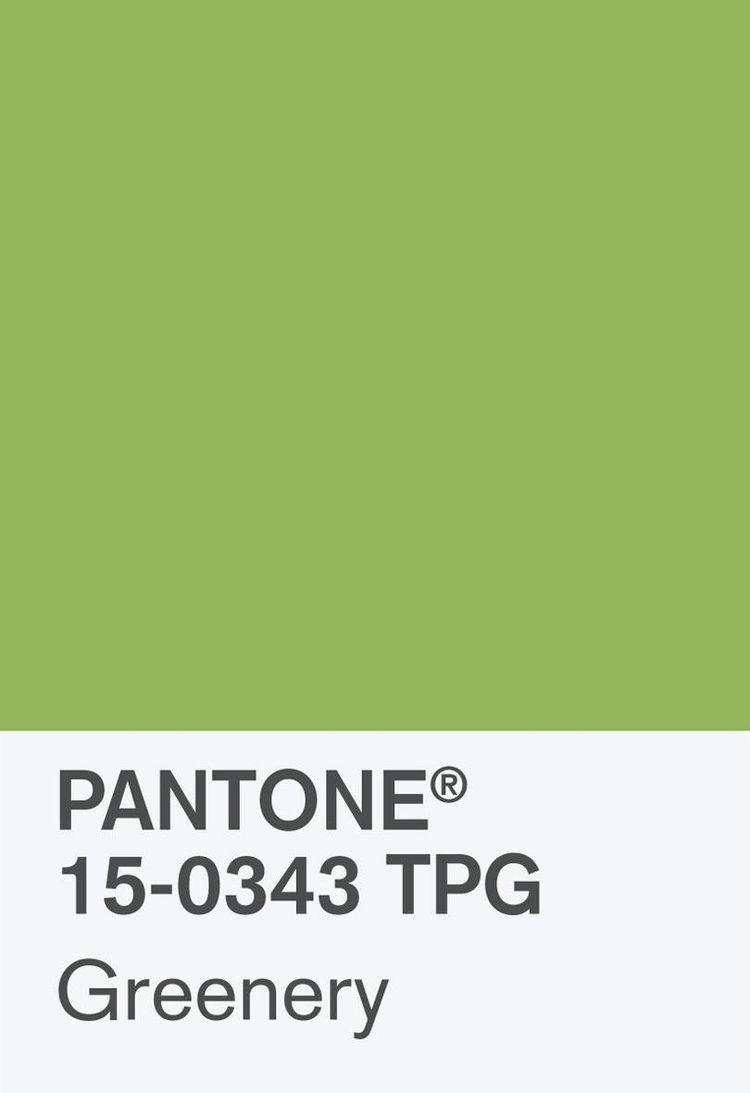 Pantone Coy 2017 Hero Shot Rgb Chip 2