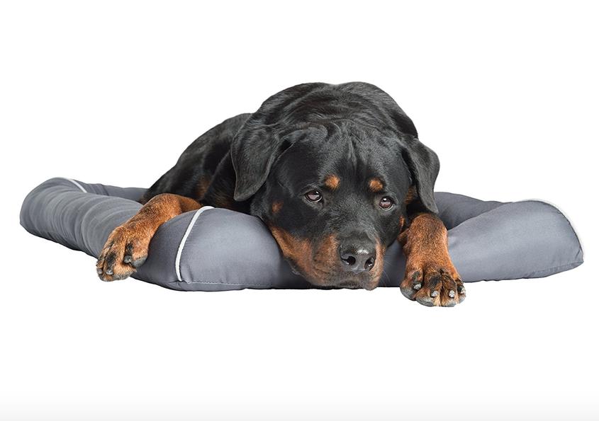 Pet Therapeutics Cooling Gel Pet Bed