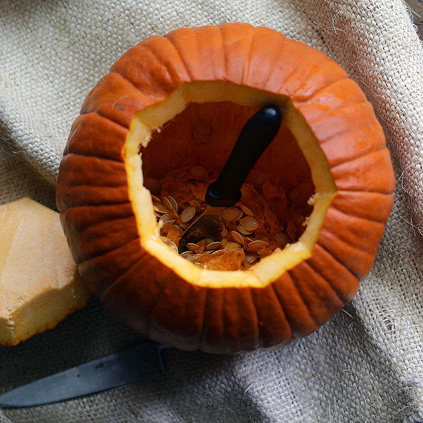 Pumpkin Patch 8