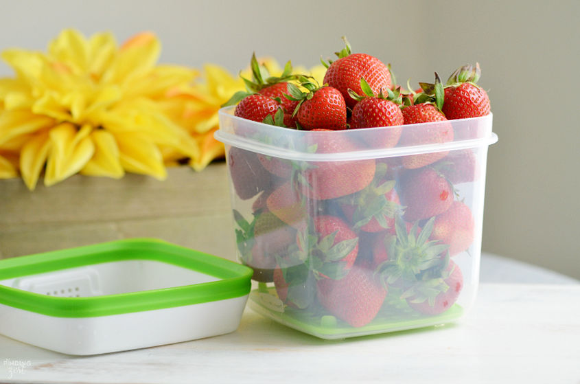 Rubbermaid Freshworks With Strawberries