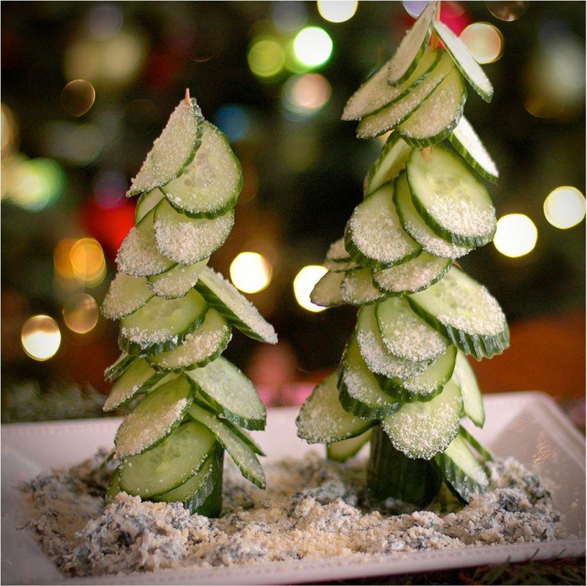 cucumber tree3