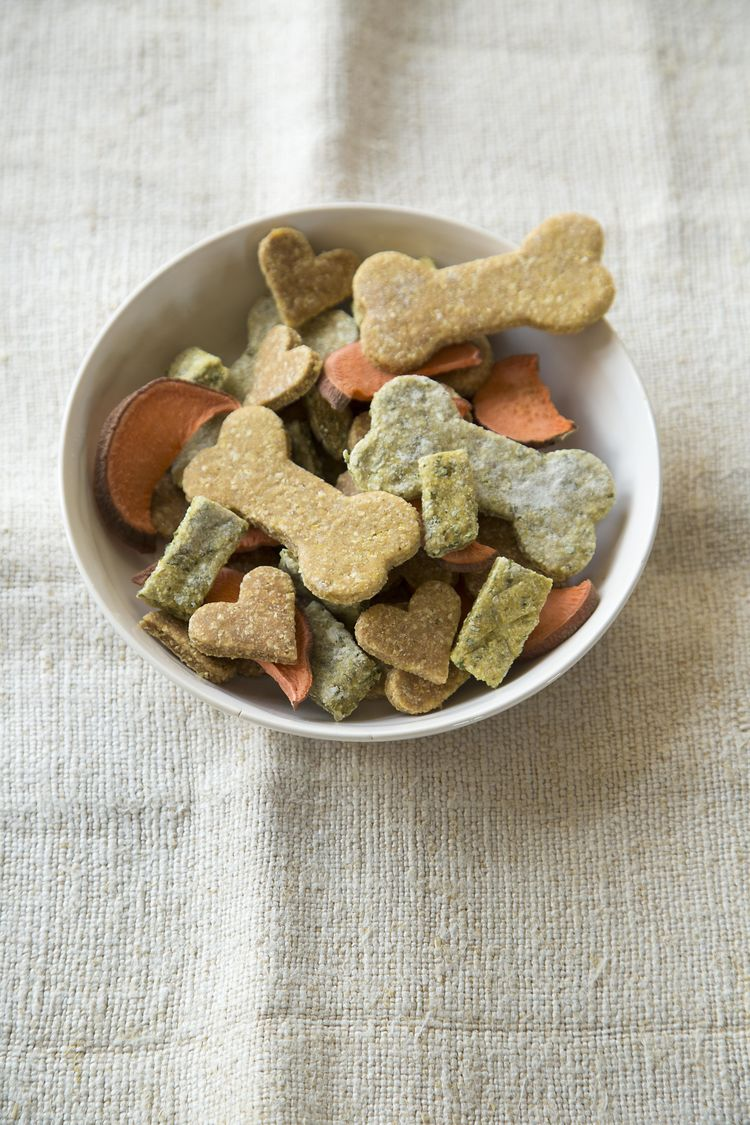 Homemade Dog Treats for Your Four-Legged Pals