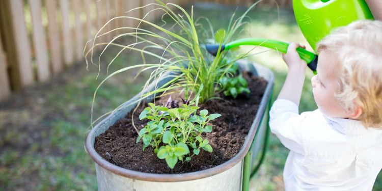 Toddler-Friendly Gardening Tips & Ideas