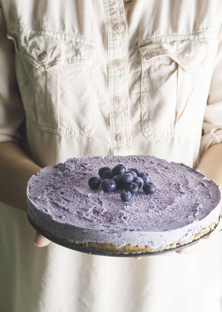 Dairy Free Frozen Blueberry Cheesecake