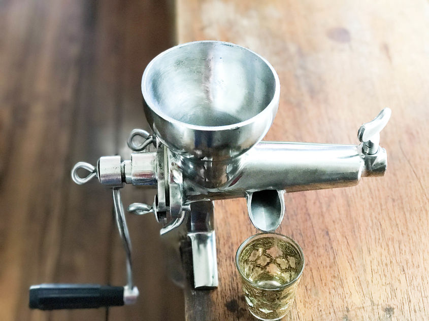 Whaetgrass Juicer