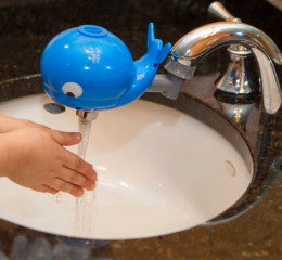 Featured Product Whaleywasher