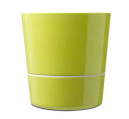 Featured Product Large Herb Pot in Lime