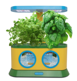 Featured Product Herbie Kid's Garden with Pizza Party Activity Kit