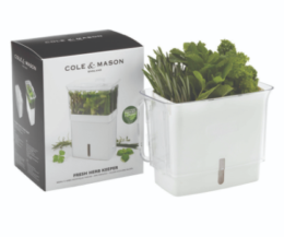 Featured Product Fresh Herb Keeper