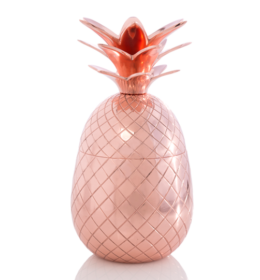 Featured Product Large Pineapple Container
