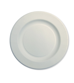Featured Product Disposable Tableware, Ivory Righe Dinner Plates