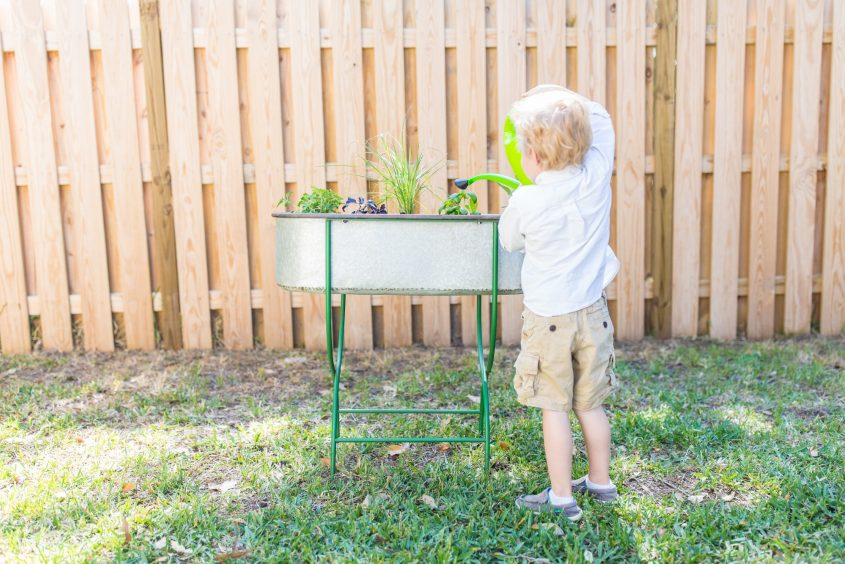 Toddler Friendly Gardening 6