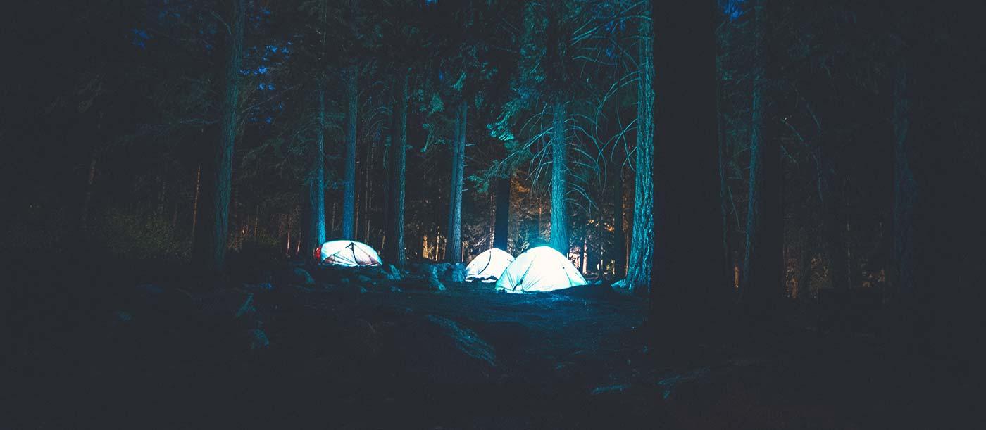 An Amazing Journey Through the Wilderness 6