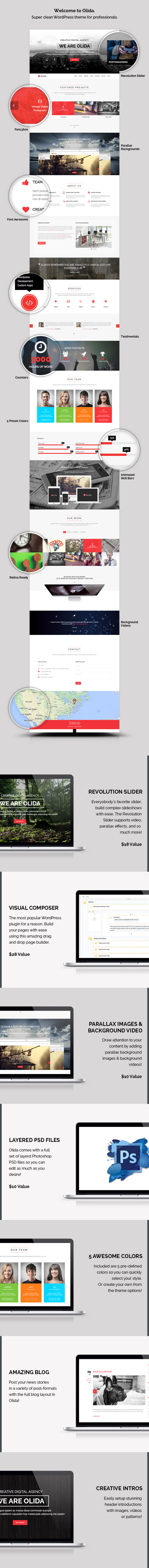 WordPress theme Olida - Creative Parallax One Page WP Theme (Creative)