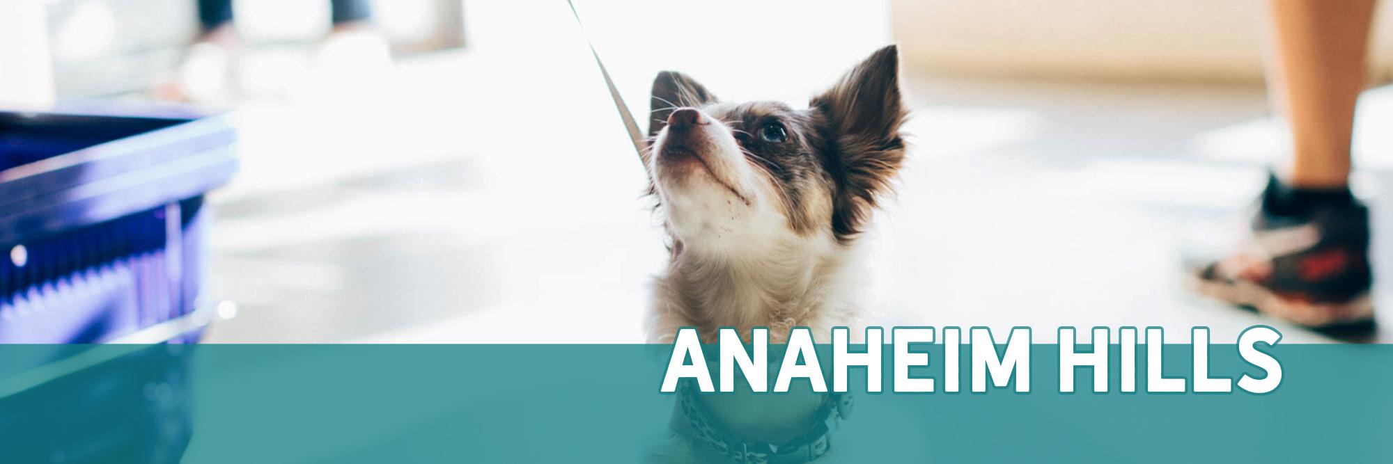 Healthy Pet Store in Anaheim Hills