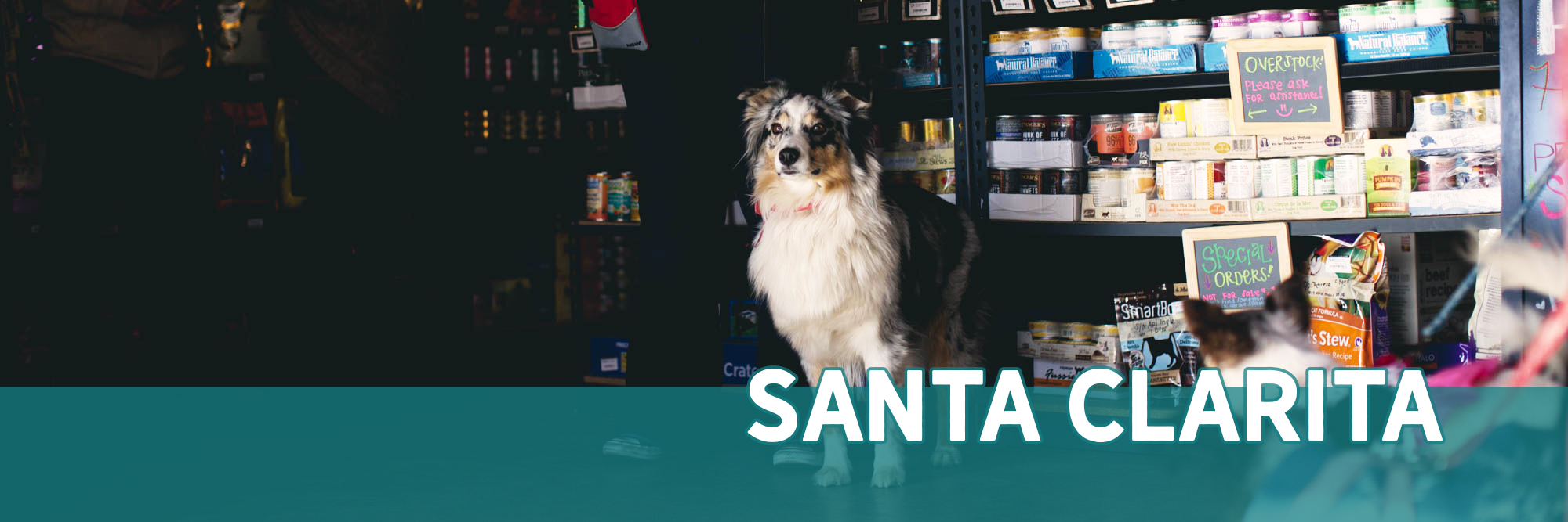 Healthy Pet Store in Santa Clarita