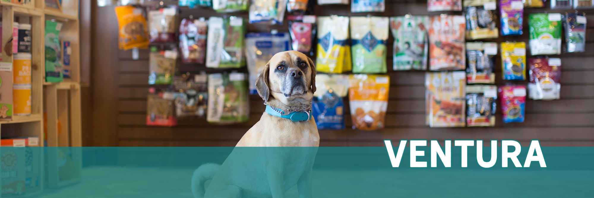 Healthy Pet Store in Ventura