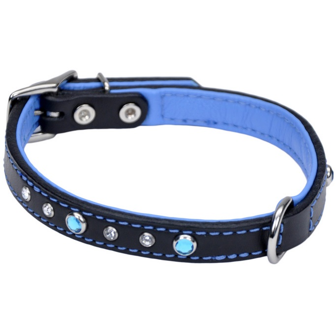 "Coastal 'Circle T' Fashion Leather Bejeweled Dog Collar - 5/8"" x 16"", Black with Blue Jewels"