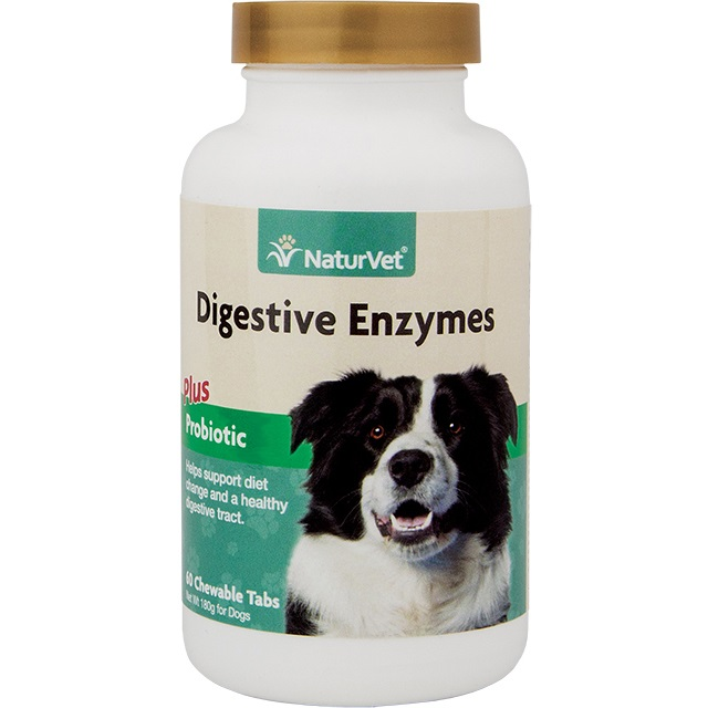 NaturVet Digestive Enzymes Plus Probiotic Supplement for Dogs - Chewable Tablet, 60 Count