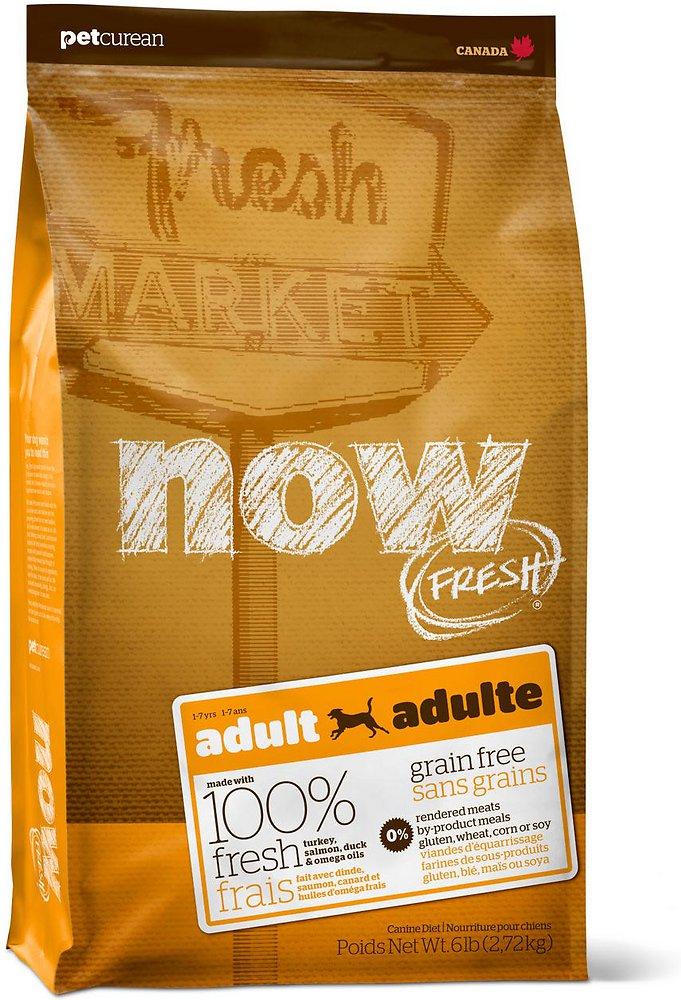 Petcurean Now Fresh Grain-Free Adult Recipe Dry Dog Food 6lbs