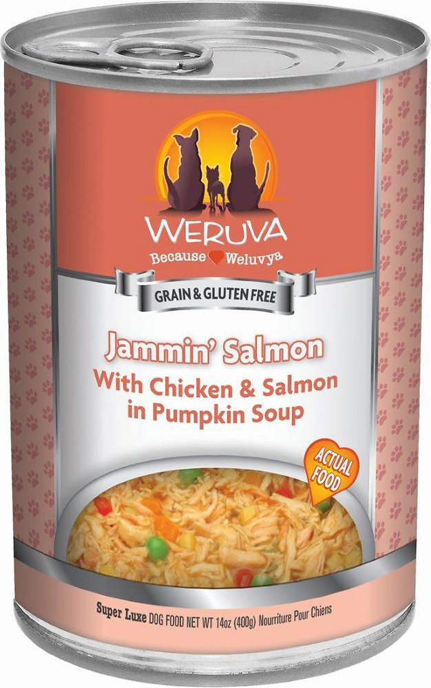 Weruva Jammin' Salmon with Chicken & Salmon in Pumpkin Soup Grain-Free Canned Dog Food 14z, 12