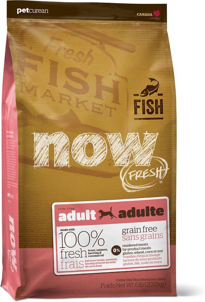 Petcurean Now Fresh Grain-Free Adult Fish Recipe Dry Dog Food 6lbs