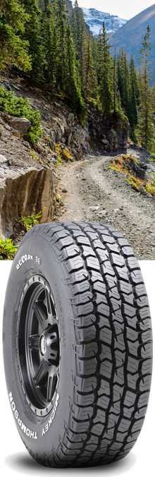 Mickey Thompson Deegan 38 - All-Terrain