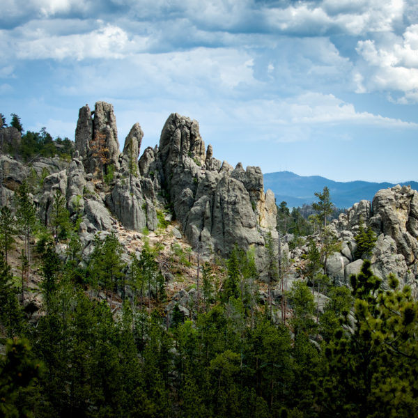 Needles Highway Spires
