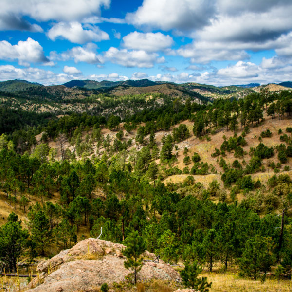 Black Hills I