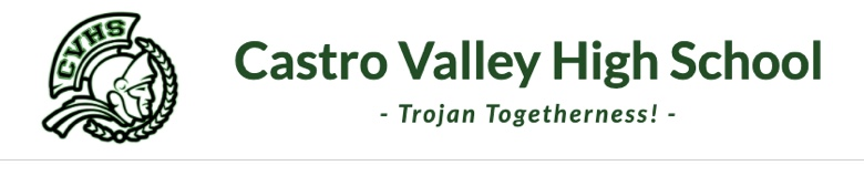 CASTRO VALLEY HIGH SCHOOL banner
