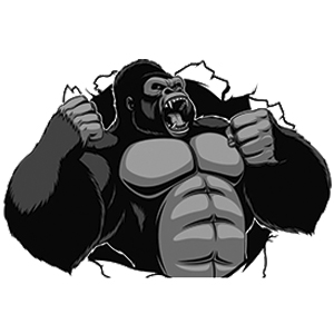 Silverback Strong