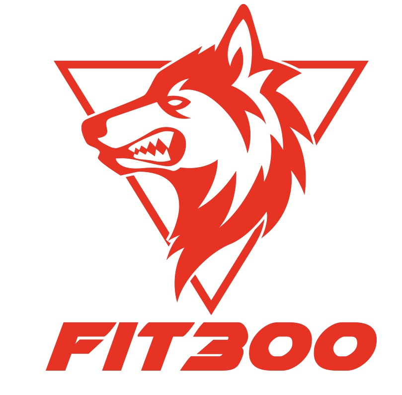 Fit300 Functional