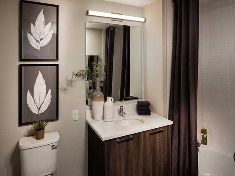 1501 voorhies avenue bathroom