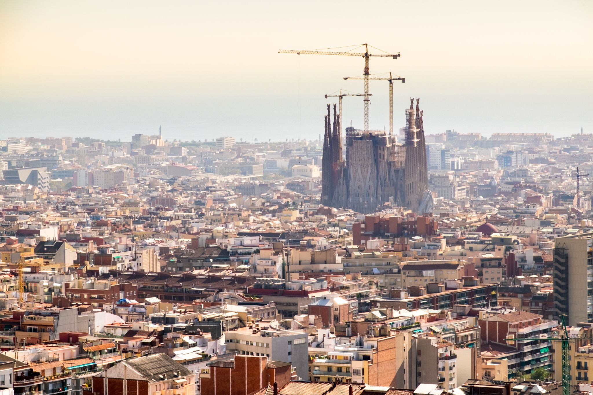 Sagrada Familia from afar