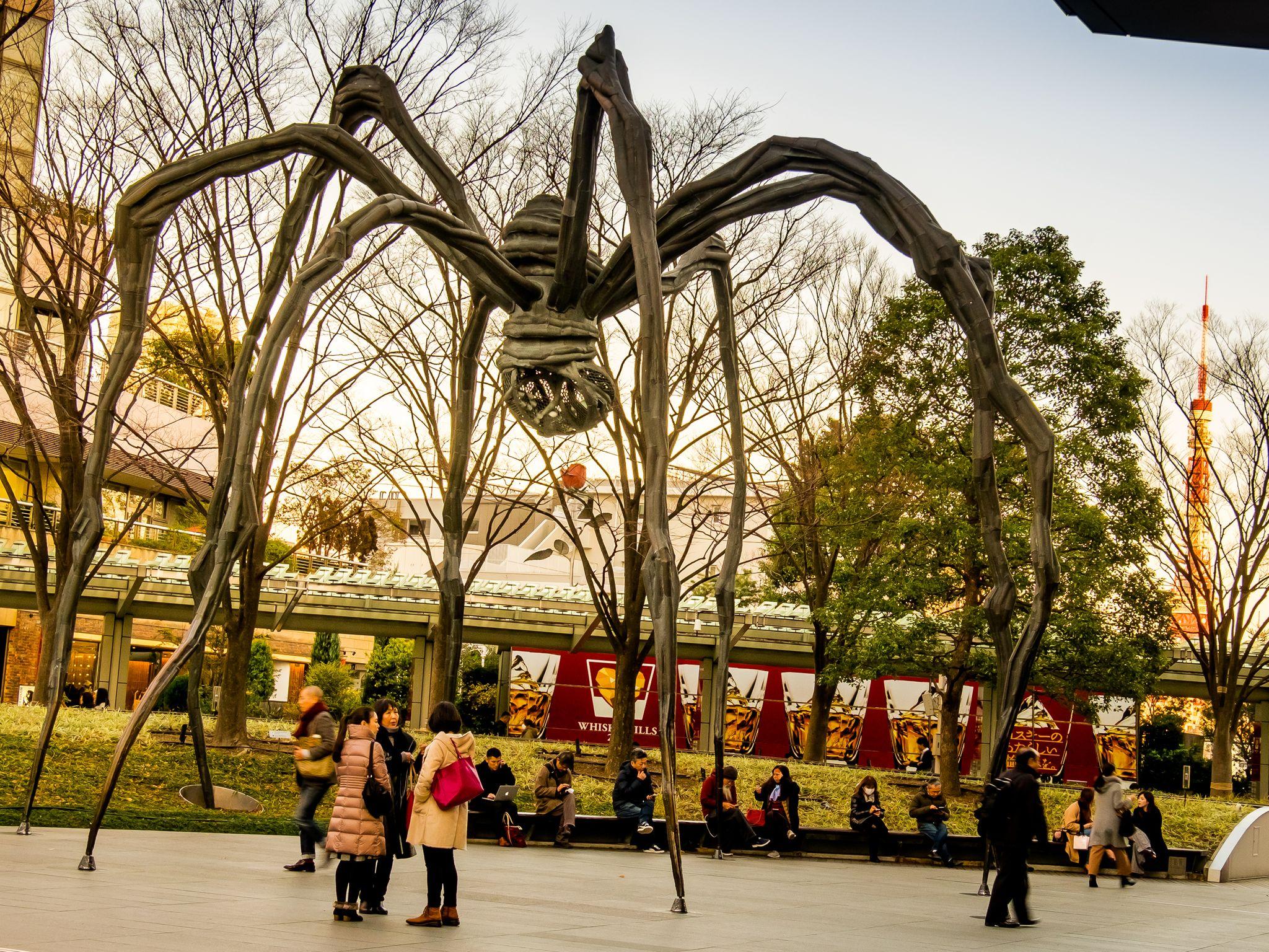 Mamam Spider