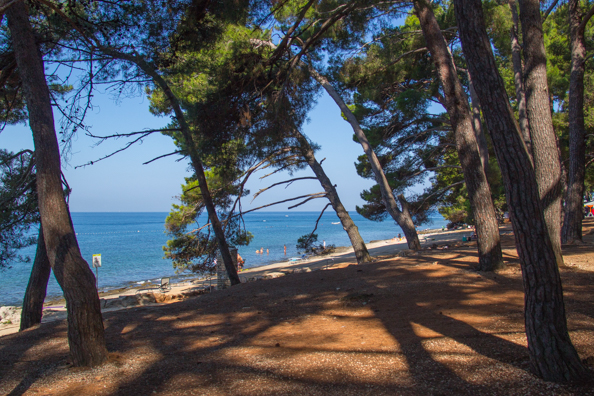 View of the sea from Camping Pineta on the Istrian Coast of Croatia