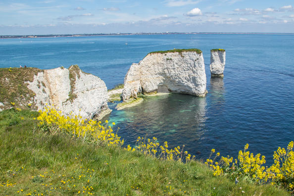 Old Harry's Rocks on the South West Coast Path on the Jurassic Coast in Dorset , UK
